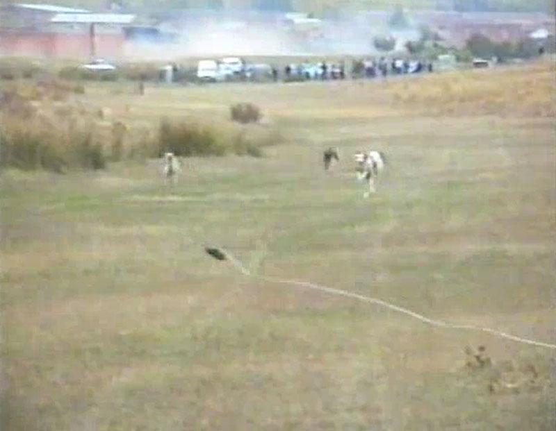 Carreras de galgos. 1994